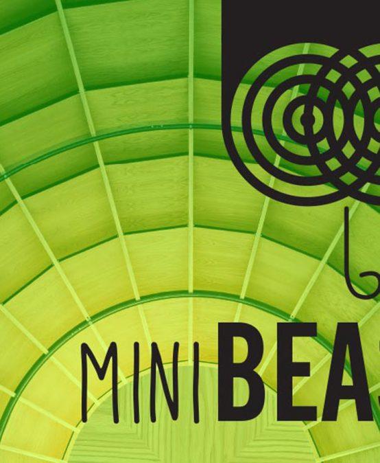 MiniBEAST – BLAST